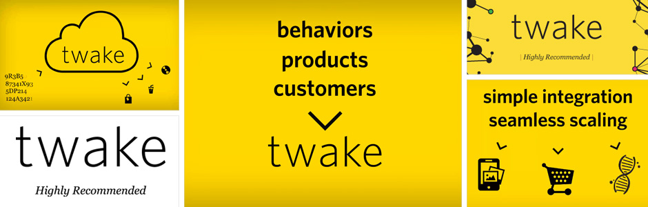 Twake Animation & Brand Design